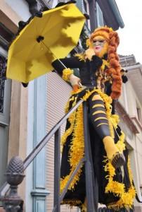 Carnaval costumes Rosheim et Annecy
