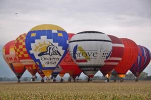 Coupe Icare montgolfières (2)