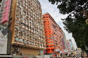 Hong Kong la profusion  (7)