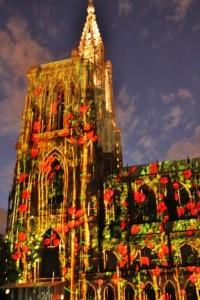Illuminations de la Cathédrale  (9)