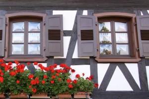 maisons nord de l'Alsace + vitres bombées  (4)